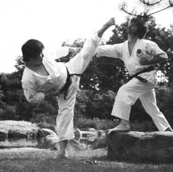 Nagai Shihan mit seiner Lieblingstechnik, yoko geri keage